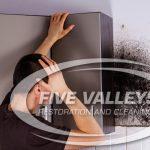 mold removal missoula, mold remediation missoula, mold cleanup missoula