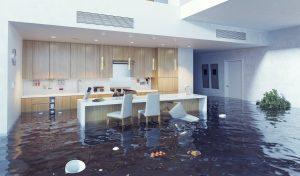 water damage cleanup missoula, water damage missoula, water damage repair missoula