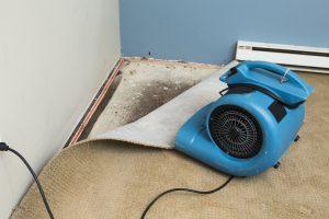 water damage restoration missoula, water damage cleanup missoula, water damage repair missoula